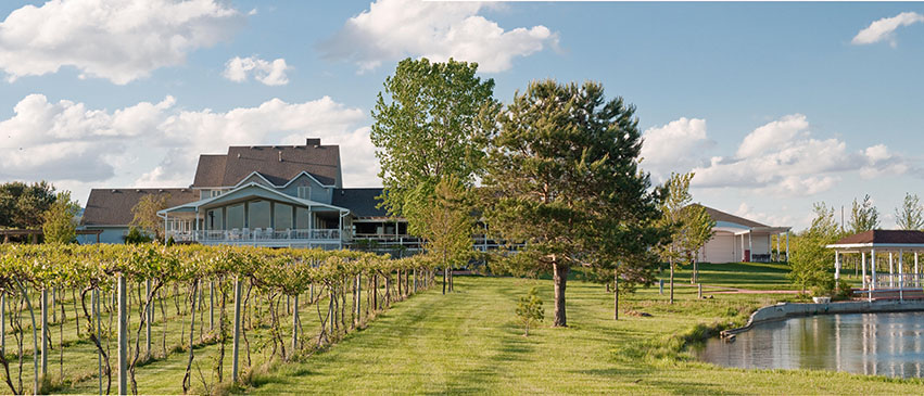 Mackinaw Valley Vineyard and Winery