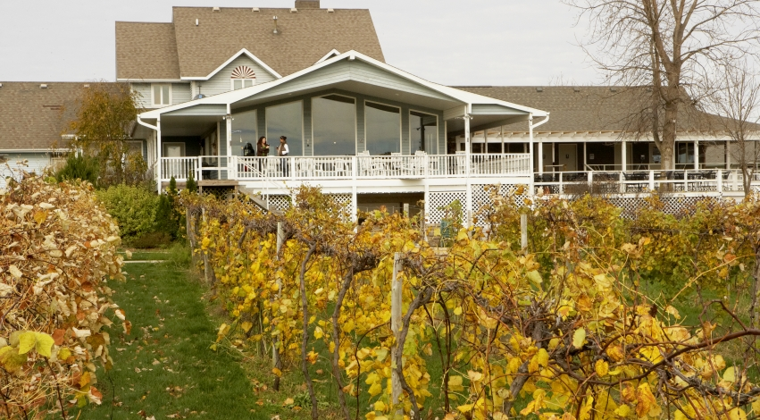 Mackinaw Valley Vineyard