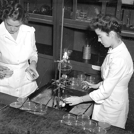 Mary Hunt working in the lab