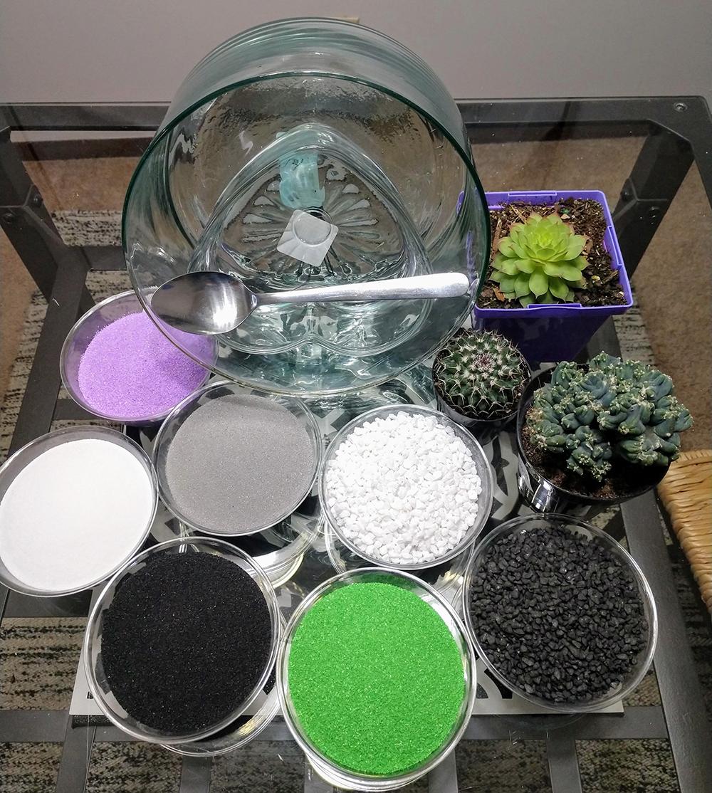 Materials for creating succulent sand art
